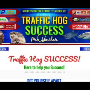 Perpetual Income 365 Free Google Traffic Method  How To Promote Perpetual Income 365