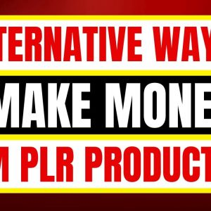 How to Make Money With PLR Products - 5 Ways To Make Money From PLR Content