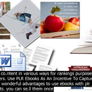 How do plr ebooks wor.k   plr stands for private label rights and its the name of a lic.ens
