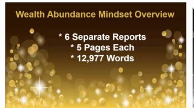Wealth Abundance Mindset PLR REvieW