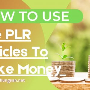 How To Use PLR Articles To Make Money Online and Work From Home