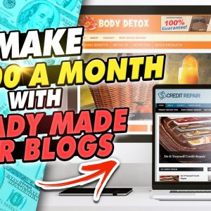 Make $3000 A Month With Ready Made VIRAL PLR Blogs | MAKE MONEY ONLINE